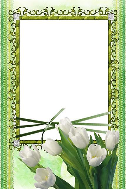 Flower Frame PNG Image