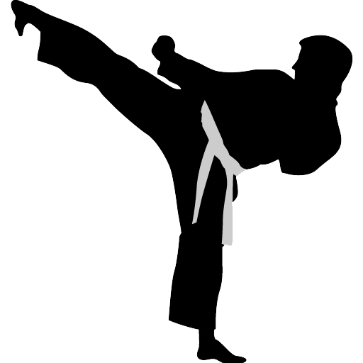 Karate Transparent Background PNG