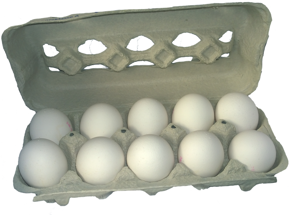 Eggs Download PNG Image